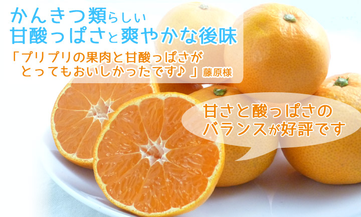柑橘類らしい甘酸っぱさと爽やかな後味「プリプリの果肉と甘酸っぱさがとってもおいしかったです」森本様